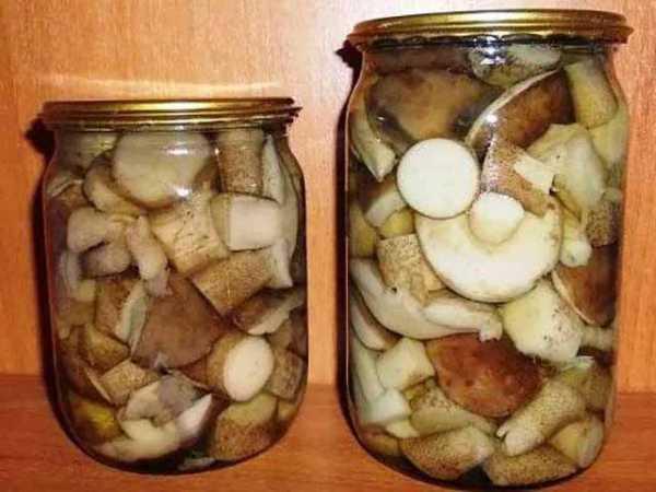 Консервация груздей в домашних условиях: как замариновать грибы на зиму, подготовка и рецепты