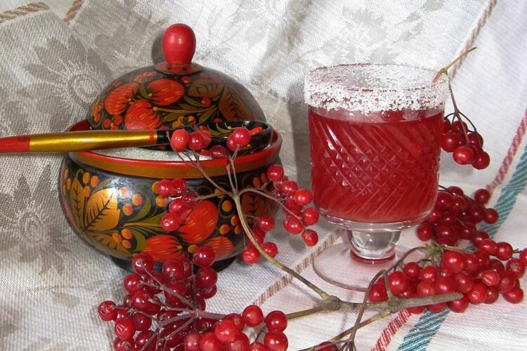 Настойка калины (на водке, на спирту и другие): полезные свойства, рецепты и другие особенности