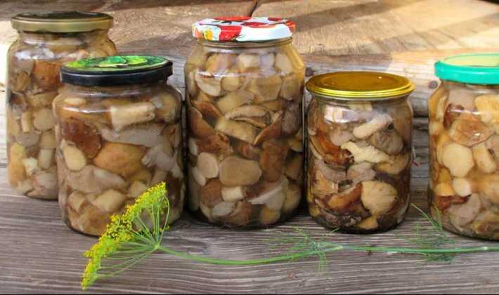 Консервированные жареные грибы — пошаговый рецепт с фото