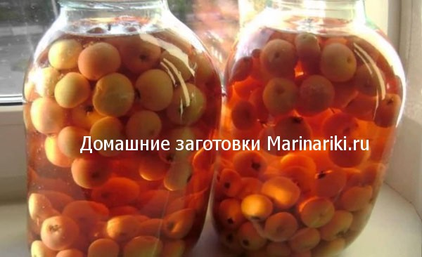 Проще не придумаешь — заготавливаем на зиму вкусный компот из абрикосов