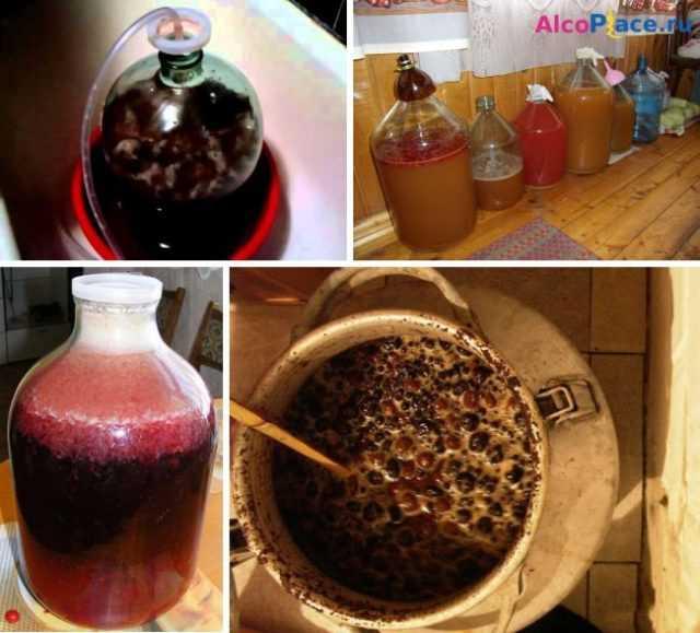 Самогон из винограда - рецепт самогона (чачи) в домашних условиях