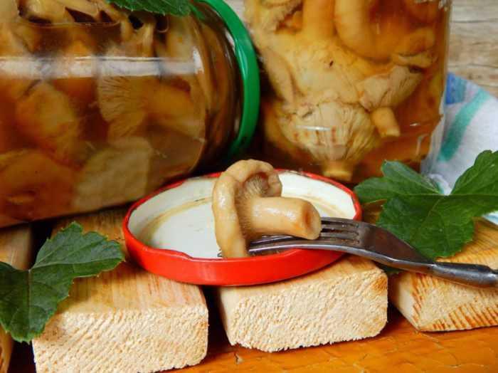 Рецепты маринования волнушек горячим способом на зиму: советы, рекомендации. Как выбрать и подготовить ингредиенты. Популярные рецепты маринования волнушек горячим способом: с уксусом, лимонным соком, с чесноком.