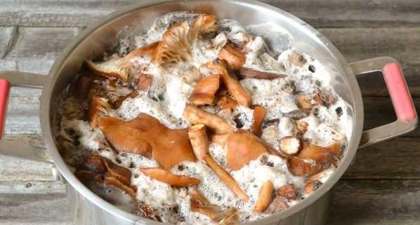 Икра грибная на зиму рецепт через мясорубку с морковью и луком без стерилизации, пошаговые фото
