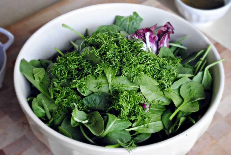 20 рецептов вкусных и полезных салатов со шпинатом