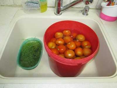 Как засолить помидоры в ведре?