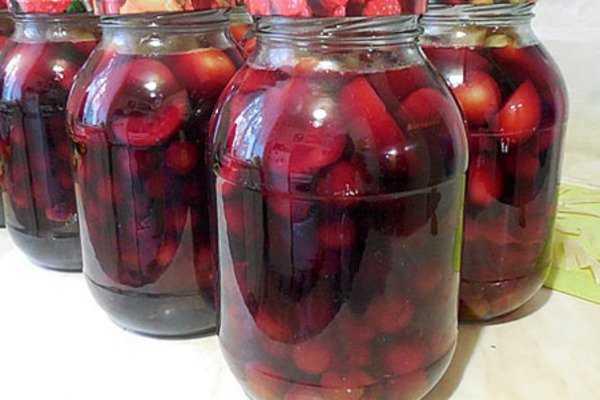 Компот из терна: польза и вред, особенности приготовления, правила хранения. Как варить напиток на зиму с добавлением яблок, кабачка, алычи. Рецепты из свежих и мороженых ягод.