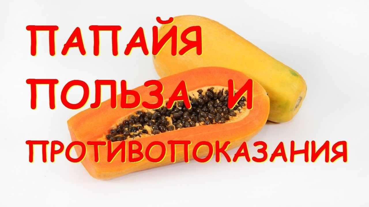 Папайя фрукт, польза и вред для организма, как кушать, выбрать и хранить
