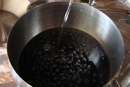 Изюм из черноплодной рябины