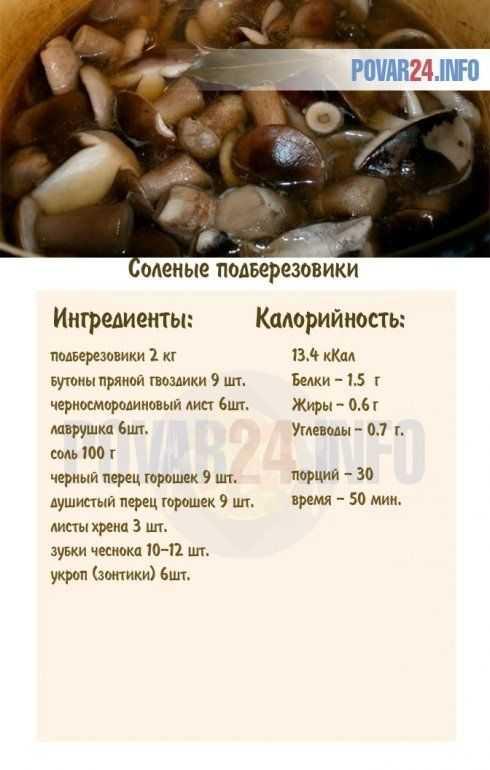 Подберезовики на зиму: простые рецепты приготовления в банках