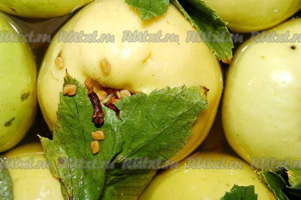 Как приготовить квашеные яблоки с капустой в домашних условиях?