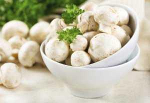 Салат с консервированными шампиньонами: простые и вкусные рецепты
