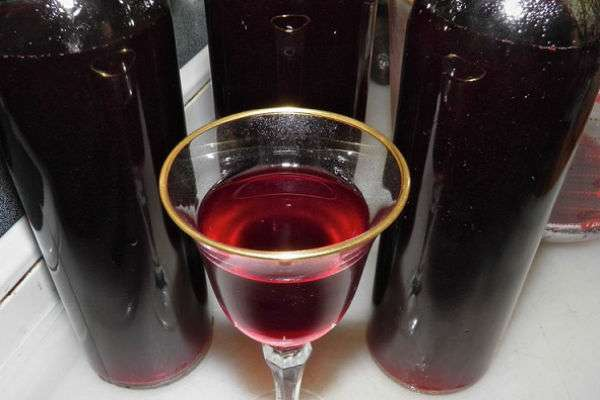 Вино из сливы в домашних условиях, простой рецепт
