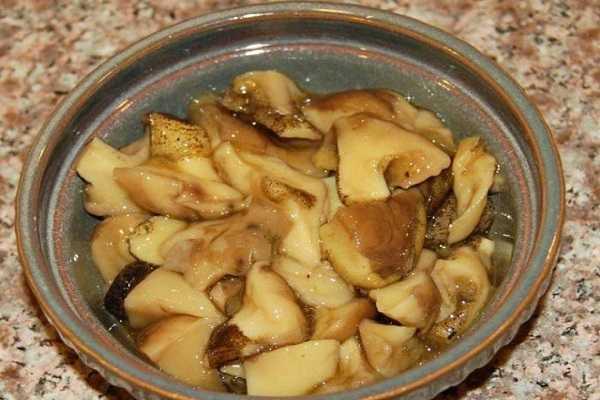 Способы соления грибов на зиму в домашних условиях: фото, простые рецепты, как правильно солить грибы