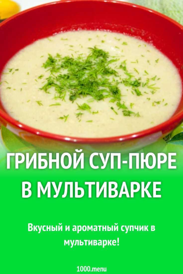 Рецепты грибного супа из свежих шампиньонов с картофелем с фото