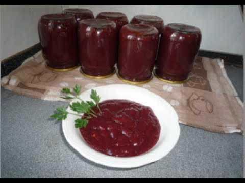 Самые вкусные соусы из сливы на зиму – острые и кисло-сладкие