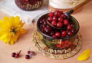 Полезные свойства и рецепты заготовок брусники на зиму
