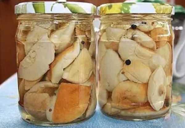 Рецепты приготовления груздей на зиму: 11 лучших пошаговых вариантов с фото. Правила хранения. Советы и секреты опытных кулинаров, польза закуски.