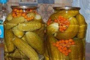 Сельдерей черешковый на зиму: заготовки, рецепты, лучшие методы приготовления стеблевого маринованного, как правильно заготовить
