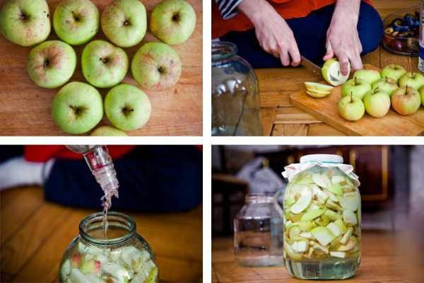 Сливянка в домашних условиях: простой рецепт приготовления