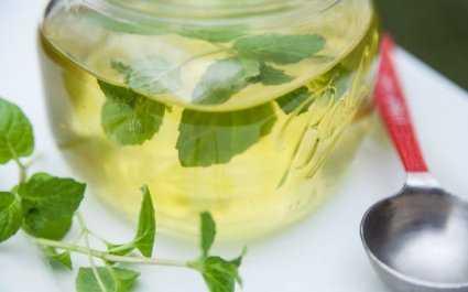 Тутовый дошаб: полезные свойства и применение, химический состав и противопоказания. Как самому приготовить сироп из шелковицы, как хранить и применять.