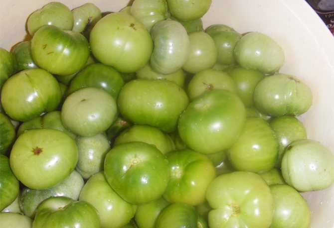 Маринованные зеленые помидоры на зиму - рецепты на любой вкус