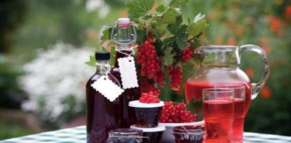 Ликер из красной смородины в домашних условиях: пошаговый рецепт, быстро и просто от марины выходцевой