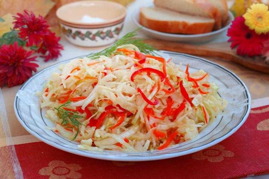 Маринованная капуста: с болгарским перцем быстрого приготовления за 12 часов, рецепты с чили, морковью, чесноком, уксусом, луком, как выбрать вкусные сладкие овощи? русский фермер