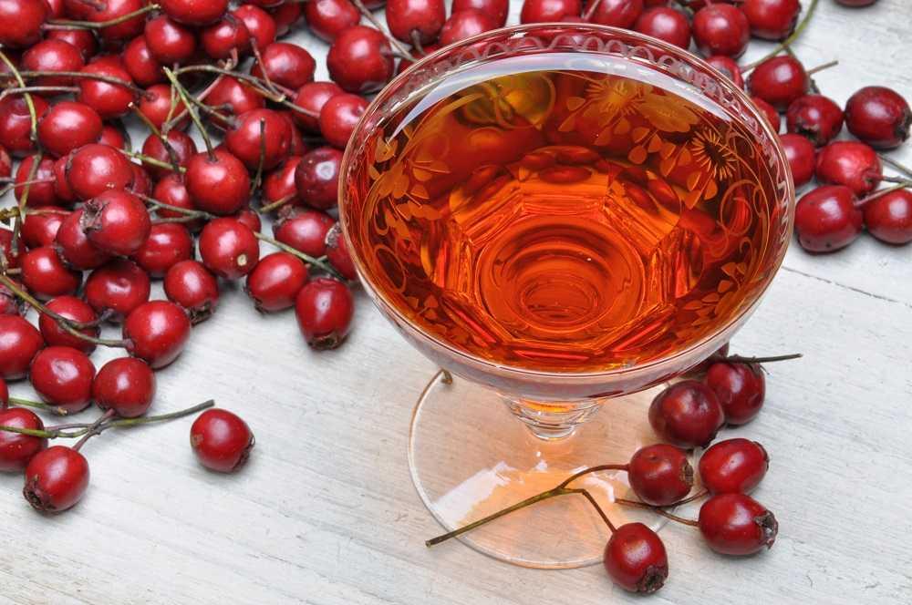 Домашнее вино из боярышника: необходимая техника и утварь, советы опытных виноделов и полезные свойства напитка, противопоказания для употребления