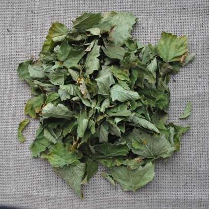 Как сушить рябину красную или черноплодную на зиму в домашних условиях в сушилке, духовке, микроволновке