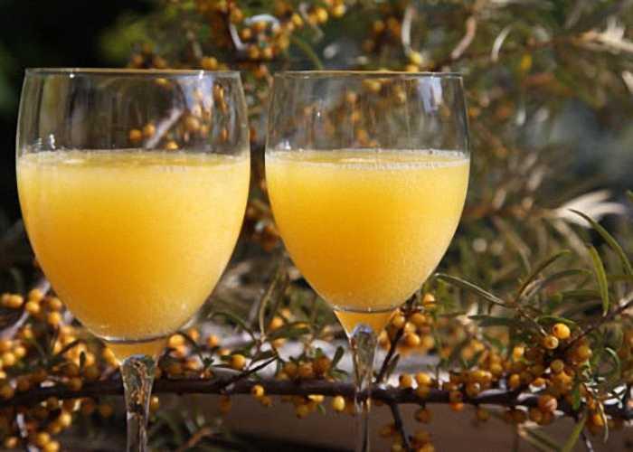 Облепиховое вино — пошаговый рецепт с фото