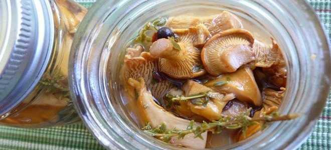 Как правильно сушить грибы: 8 способов