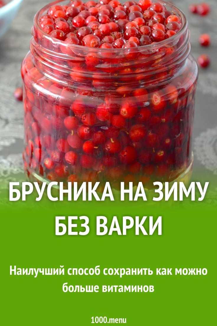 Заготовки брусники на зиму: самые лучшие рецепты / заготовочки