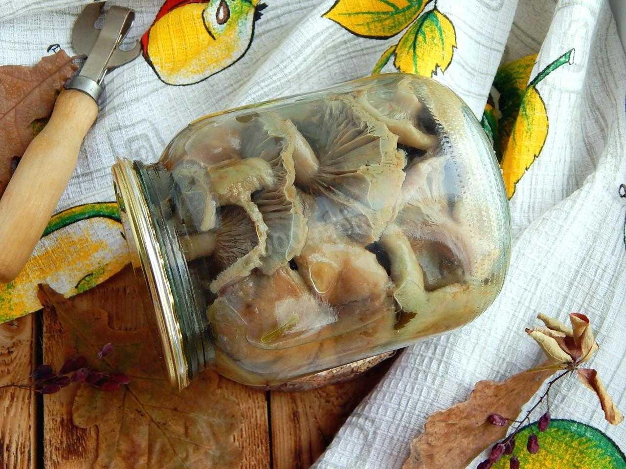 Как солить волнушки в домашних условиях на зиму: рецепты с видео