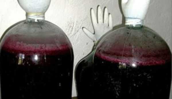Вино из красной смородины в домашних условиях: простой рецепт, как сделать без дрожжей