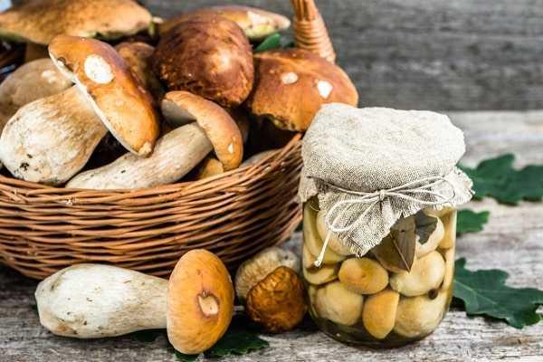 Как солить белые грибы в домашних условиях - простые рецепты приготовления в банках на зиму