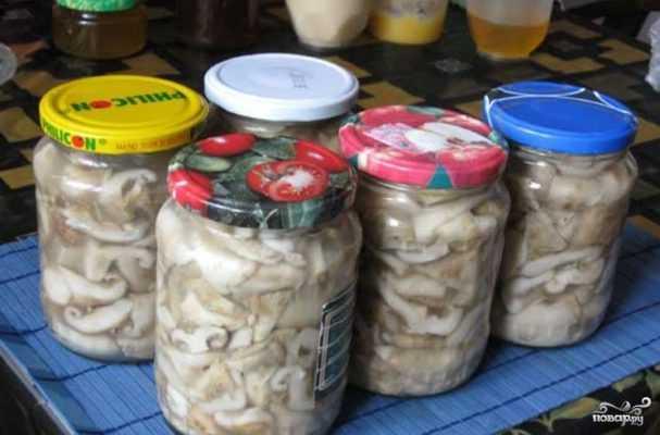 Как солить грибы - рецепты засолки горячим и холодным способом, как хранить и какие грибы солить