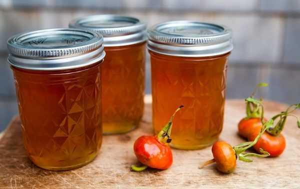 Калина на зиму: лучшие рецепты приготовления заготовок в домашних условиях