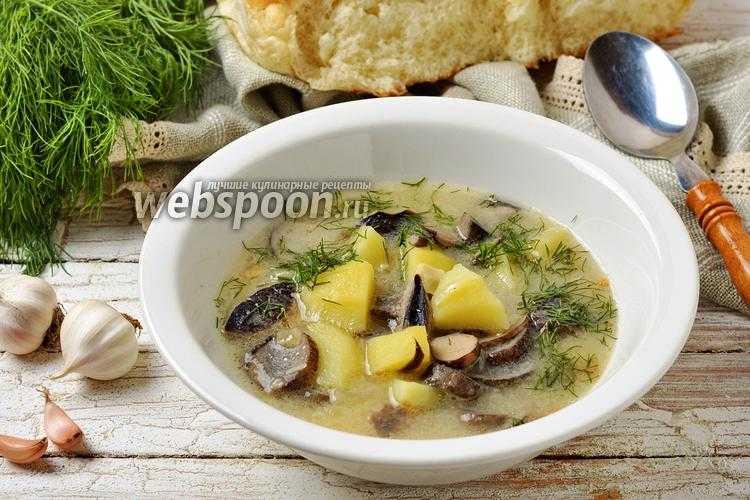 Суп из подосиновиков: свежих, замороженных, сушеных, сколько варить грибы, фото - растения и огород