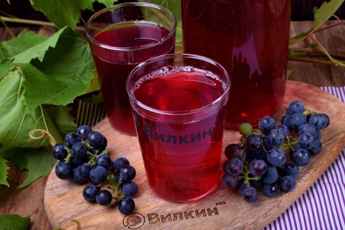 Компот из винограда на зиму — рецепты на 3 литровую банку