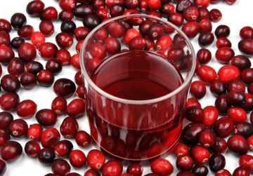 Вино из брусники – 10 замечательных рецептов в домашних условиях