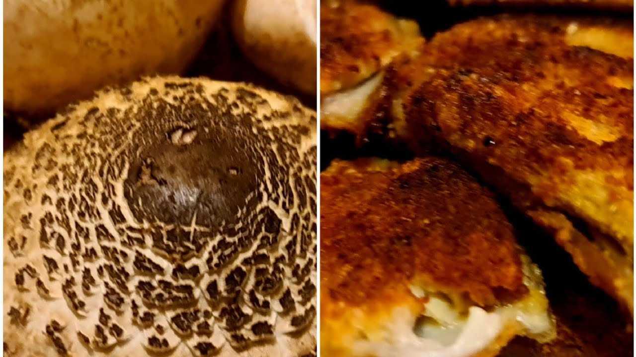 Креветки в кляре - как приготовить на сковороде или во фритюре по рецептам с фото
