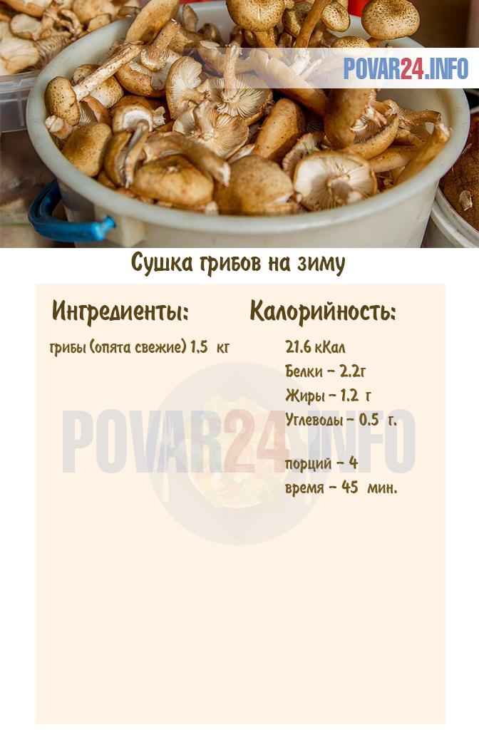 Как сушить грибы правильно (7 способов в домашних условиях)