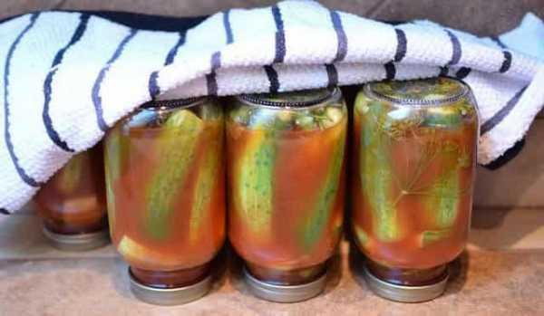 Перец маринованный в масле на зиму: простые рецепты для болгарского и острого овоща