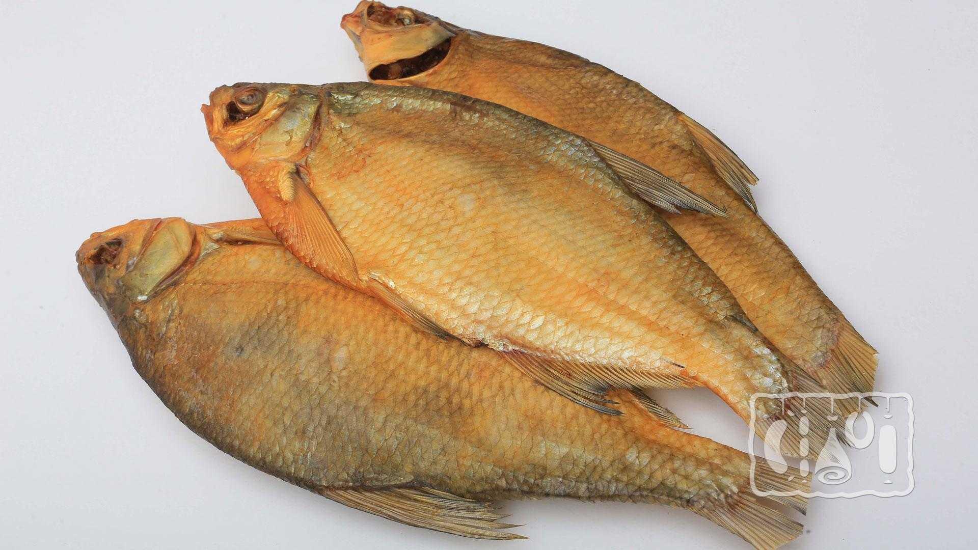 Рыба горячего копчения в духовке: рецепты в домашних условиях