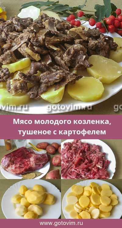 Грибы козляк: рецепты приготовления, как мариновать и солить