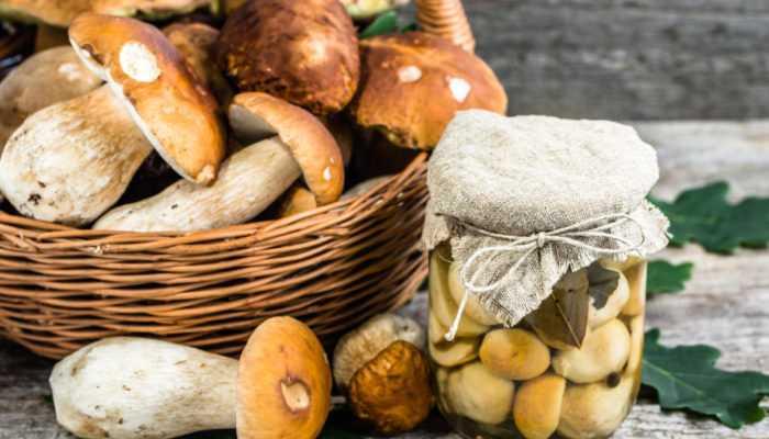 Как правильно хранить вареные грибы в домашних условиях