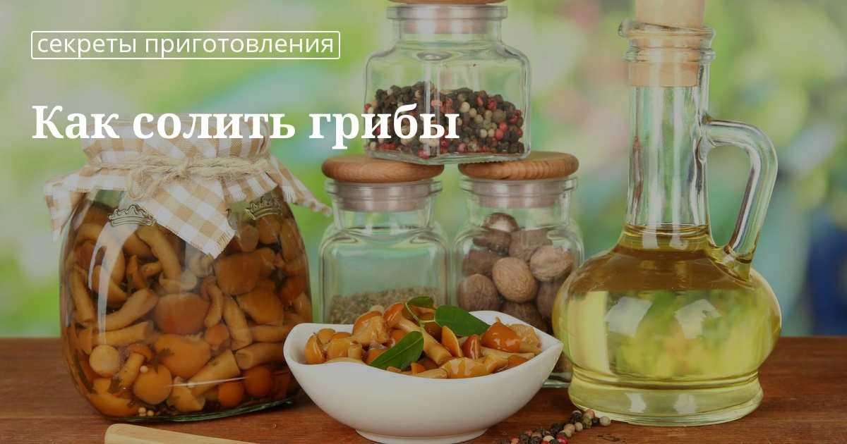 Как вкусно посолить грибы в домашних условиях: рецепты и советы