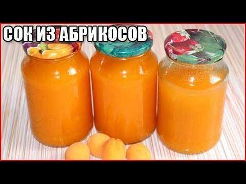 Вкуснейший сок из абрикоса с мякотью: популярные рецепты на зиму