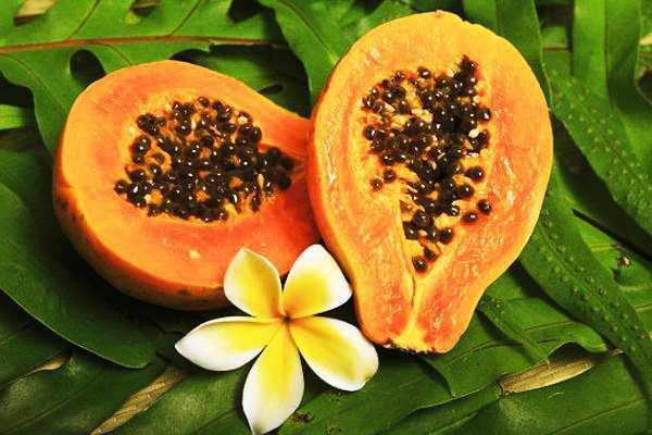 Цукаты из папайи: польза, вред, калорийность, рецепты, фото