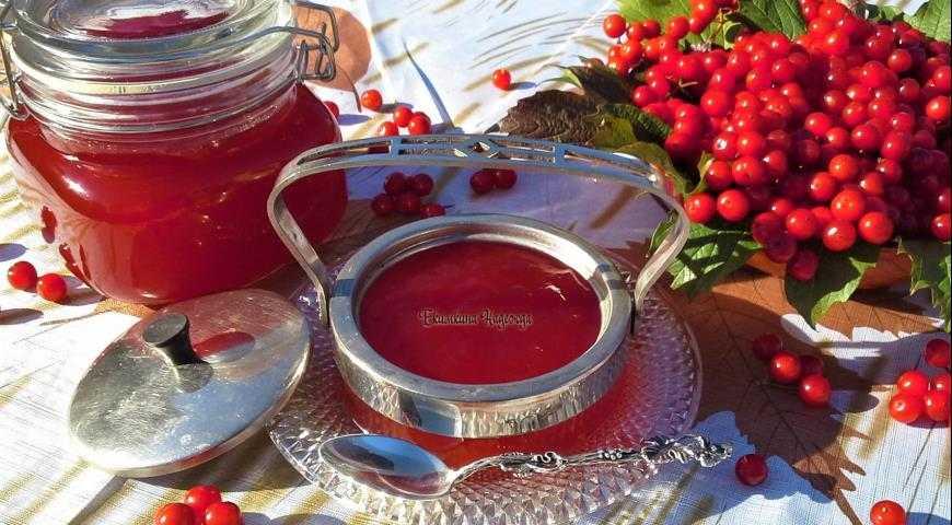 Калина красная на зиму: заготовки в домашних условиях (рецепты варенья, джема, желе, с сахаром без варки, сок без кипячения, вино)